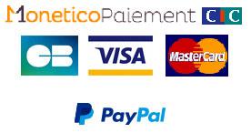 Carte bancaire VIsa, MasterCard, Paypal